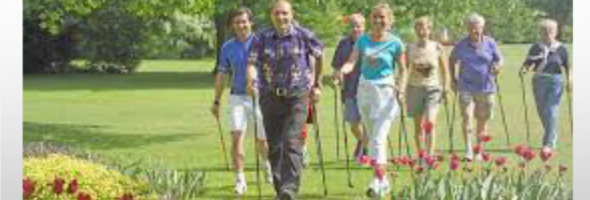 Parkinson Y Nordic Walking Complemento Perfecto
